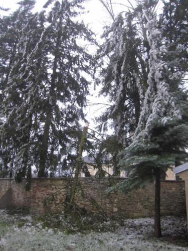 Eisregen 2014